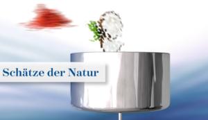 schätze-der-natur-gesundse.in